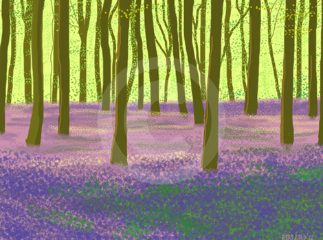BEECHWOOD WITH BLUEBELLS